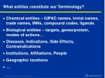 what entities constitute our terminology