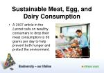 sustainable meat egg and dairy consumption