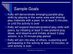 sample goals27