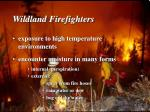 wildland firefighters1