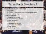 texas party structure 1