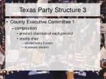 texas party structure 3