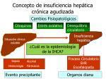 concepto de insuficiencia hep tica cr nica agudizada