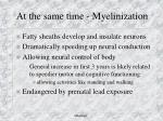 at the same time myelinization