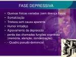 fase depressiva