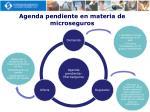 agenda pendiente en materia de microseguros