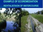 example of ecoremediation revitalistaion of watercourse