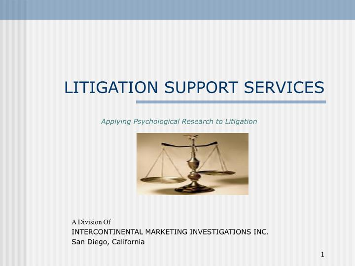 litigation support services n.