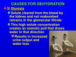 causes for dehydration3