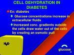 cell dehydration in diabetes