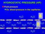 hydrostatic pressure hp