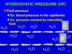 hydrostatic pressure hp1