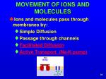 movement of ions and molecules