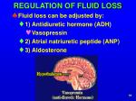regulation of fluid loss