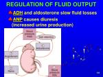 regulation of fluid output