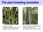 the plant breeding revolution