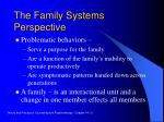 the family systems perspective3