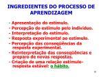 ingredientes do processo de aprendizagem