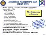 architecture management team tena amt