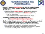 foundation initiative 2010 project objectives