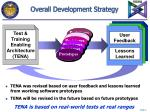 overall development strategy