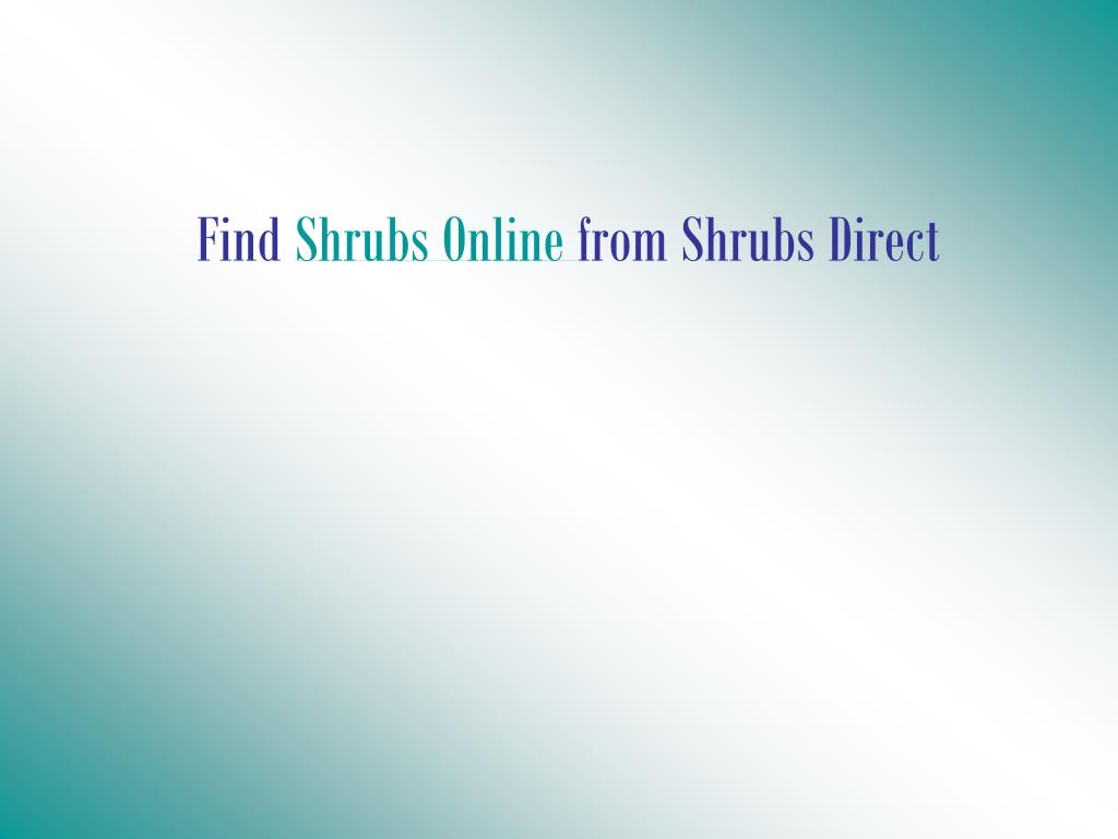 find shrubs online from shrubs direct l.