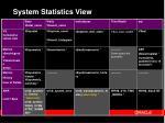 system statistics view