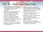 esf 6 mass care team tasks