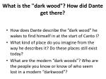 what is the dark wood how did dante get there