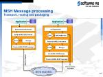 msh message processing transport routing and packaging