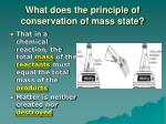 what does the principle of conservation of mass state