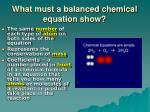 what must a balanced chemical equation show