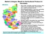 market linkages mandi for horticultural produce in karnataka