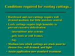 conditions required for rooting cuttings