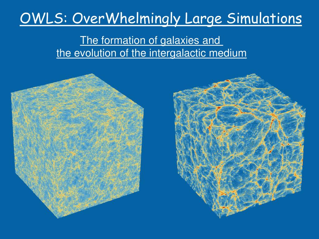 owls overwhelmingly large simulations l.