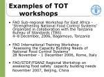 examples of tot workshops