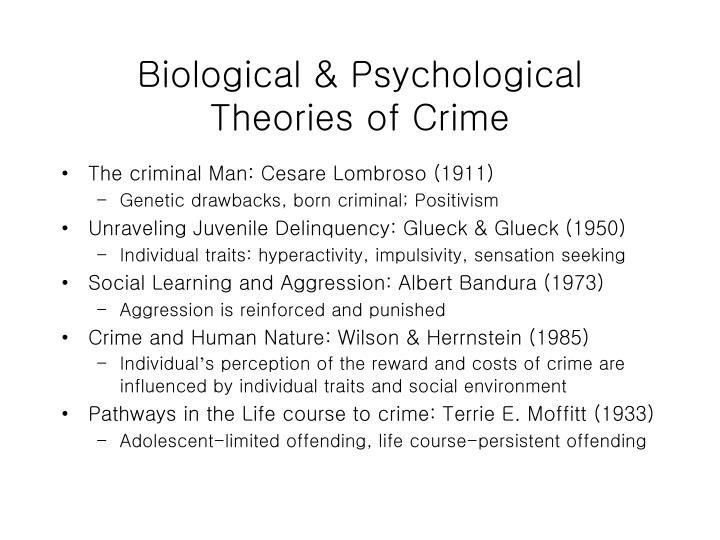 Biological psychological theories of crime