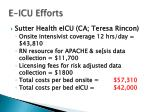 e icu efforts3