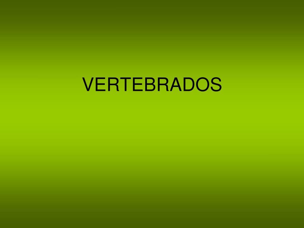 vertebrados l.