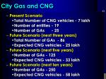 city gas and cng