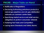pngrb major tasks on hand