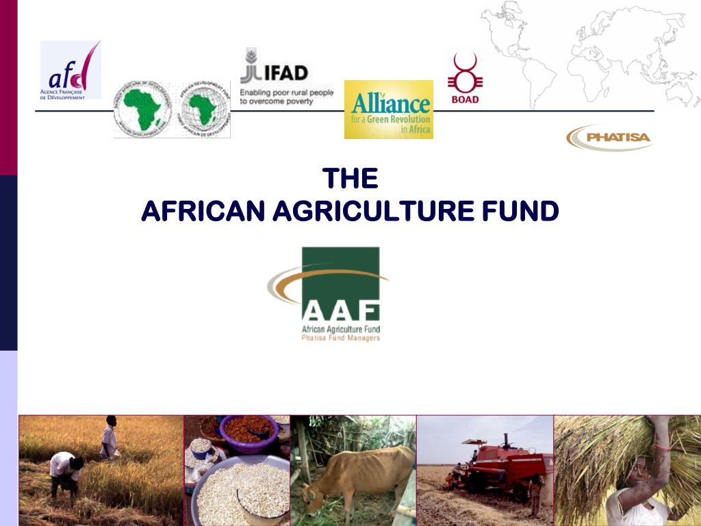 the african agriculture fund l.