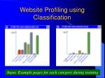 website profiling using classification