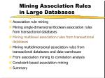 mining association rules in large databases17