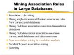 mining association rules in large databases28