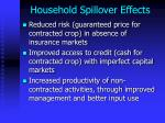 household spillover effects