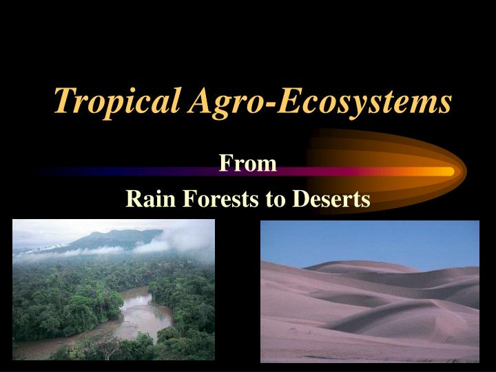 tropical agro ecosystems n.