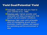 yield goal potential yield