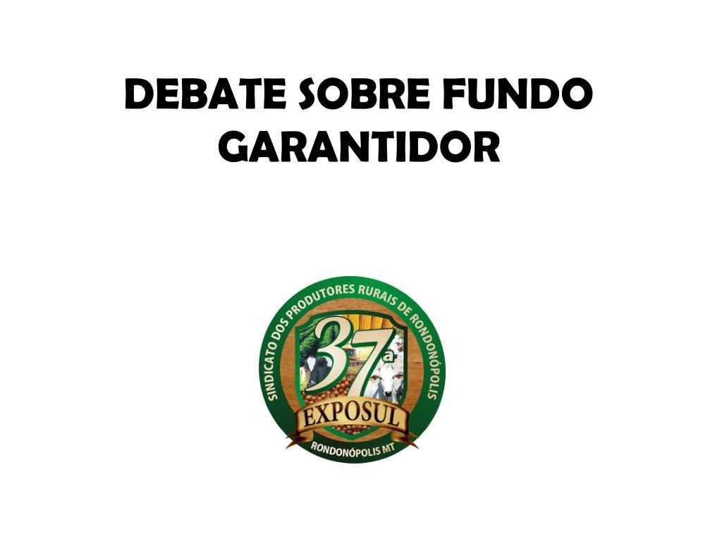 debate sobre fundo garantidor l.