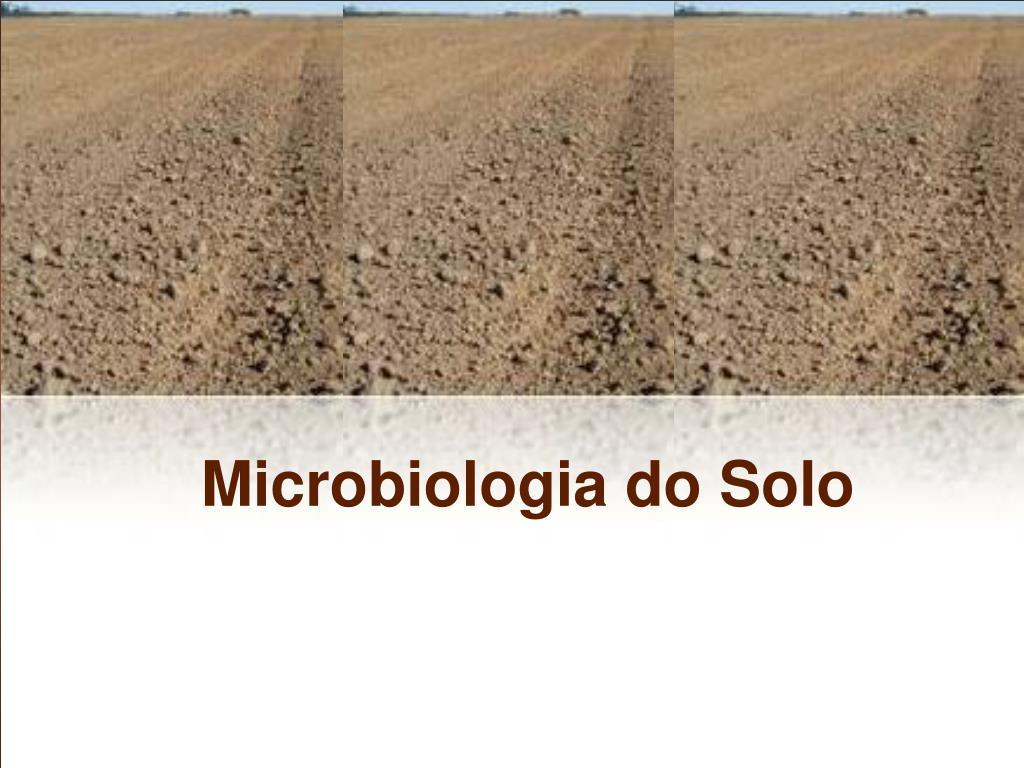 microbiologia do solo l.